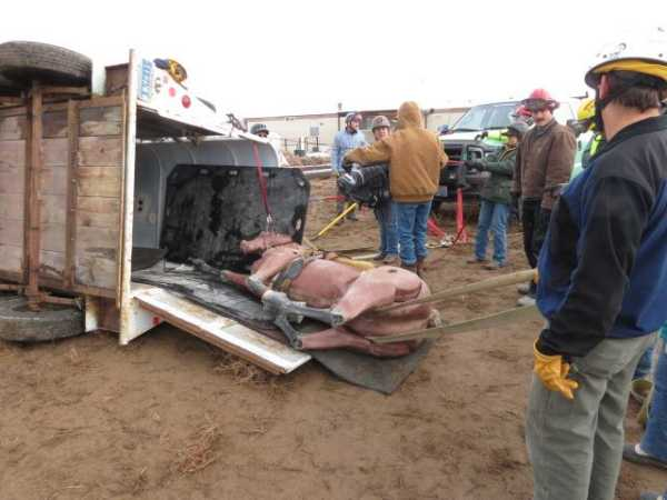 Training For Responses To Large Animal Emergencies Trailer Accident